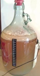 Australian Pale Ale #2