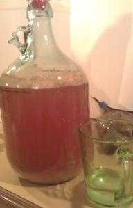 Australian Pale Ale 2 & sugar