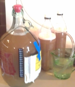 Australian Pale Ale 3
