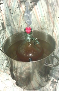 Sneaky Cider #1