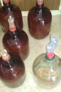 Pale Trial Zwei - empty carboys