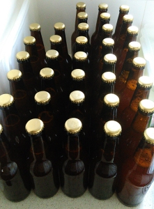 Lazy House Ale 1 bottles